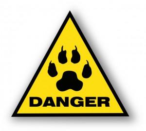 Gefahren bei BARF